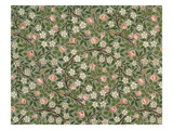 Small Pink and White Flower Wallpaper Design Reproduction procédé giclée par William Morris