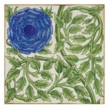 Plant with a Blue Flower (W/C on Paper) Giclee Print by William De Morgan