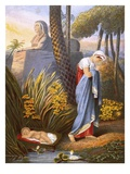 Moses Left Among the Flags Giclee Print by  English