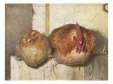 Forty Winks, 1865 (W/C on Paper) Giclee Print by J.G. Marks