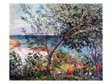 The Artist's Garden in Brittany, 1905 Giclee Print by Maxime Emile Louis Maufra