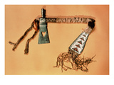 Tomahawk Pipe, Blackfoot Tribe (Steel and Textile) Giclee Print by  American