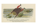 There Was an Old Person of Ems, Who Casually Fell in the Thames Giclee Print by Edward Lear