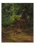 Deer in Repose, 1867 Giclee Print by Rosa Bonheur