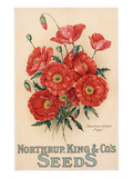 Poster Advertising Northrup, Kings and Co's Seeds, C.1898 (Colour Litho) Giclee Print by  American