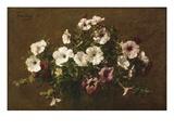 Petunias, 1881 Giclee Print by Henri Fantin-Latour