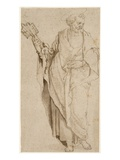St. Peter, C.1575 (Pen and Brown Ink and Wash with Chalk on Paper) Giclee Print by Orazio Samacchini
