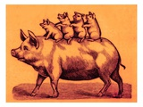 Pig with its Piglets, Illustration from 'Cole's Funny Picture Book' (Digitally Enhanced Image) Impressão giclée por English
