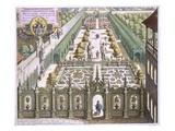 The Garden of Burgermeister Schwind, from 'Florilegium Renovatum', by Theodore De Bry (1528-98) Giclee Print by Mattaus The Younger Merian