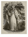 Arch-Druid in Full Judicial Costume (Litho) Giclee Print by  English