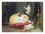 Fireside Bliss (Oil on Panel) Giclée-Druck von Henriette Ronner-Knip