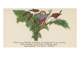 There Was an Old Man of Dundee, Who Frequented the Top of a Tree Giclee Print by Edward Lear