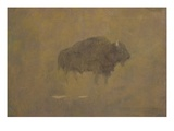 Buffalo in a Sandstorm (Oil on Paper Mounted on Board) Giclee Print by Albert Bierstadt