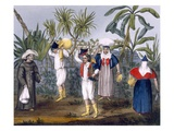 Costume of the Gambia, Plate No.9 from 'Excursions in Madiera and Porto Santo..' Giclee Print by Thomas Edward Bowdich