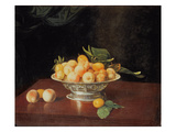 T32176 Still Life of Peaches, C.1700 Giclee Print by Andre Bouys