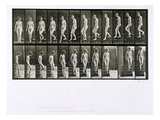 Woman Descending Steps  Plate 137 from 'Animal Locomotion'  1887 (B/W Photo)
