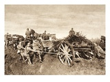 Team of Oxen Retrieve a Cannon Stuck in the Mud (B/W Photo) Giclee Print by  German photographer