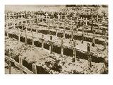 In the West Nothing New: a German Cemetery in France (Sepia Photo) Giclee Print by  German photographer