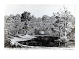 The Devil's Pool in the Bois De Chanteloup, 1844 Giclee Print by Baron Dudevant Jean Francois Maurice Sand