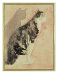 Study of a Cat (W/C on Paper) Giclee Print by Gwen John