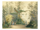 The Winter Garden of the Hofburg Palace, Vienna, 1852 (Colour Litho) (See also 170851, 171910) Premium Giclee Print by  Austrian