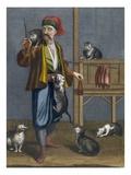 Cat Feeder Giclée-Druck von Jean Baptiste Vanmour