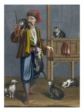 Cat Feeder Giclee Print by Jean Baptiste Vanmour