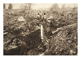 A Romanian Trench at Predeal after Being Stormed by German Troops, November 1916 (B/W Photo) Giclee Print by  German photographer