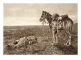 An Episode in Wallachia: a 'True Comrade' (B/W Photo) Giclee Print by  German photographer