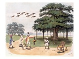 Flying Foxes at Banyantree, C.1791-98 (Colour Aquatint) Giclee Print by Charles Gold