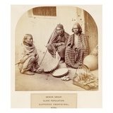 Newar Group, Slave Population, Supposed Aboriginal, Nipal, from 'The People of India' Giclee Print by  English Photographer
