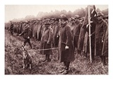 The 'Anzac' Review on Salisbury Plain: an Australian Mascot Giclee Print by English Photographer