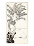 Pestonjee Bomonjee Sitting in His Palm-Tree and Watching the Rhinoceros Strorks Bathing Giclee Print by Joseph Rudyard Kipling