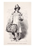 Street-Seller of Birds' Nests, Illustration from 'London Labour and London Poor' by Henry Mayhew Giclee Print by  English