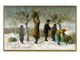 Gathering Mistletoe (Colour Litho) Giclee Print by  English