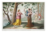 Dryope into a Tree, Book IX, Illustration from Ovid's Metamorphoses, Florence, 1832 Giclee Print by Luigi Ademollo