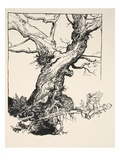 The Duke's Oak, Illustration from 'Midsummer Nights Dream' by William Shakespeare, 1908 (Litho) Gicleetryck av Arthur Rackham