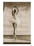 Rosella Hightower in Swan Lake, from 'Grand Ballet De Monte-Carlo', 1949 (Photogravure) Giclée-Druck von  French Photographer