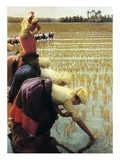 An Italian Rice Field, 1901 Giclee Print by Angelo Morbelli