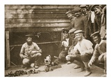 Some of the Prisoners' Pets, Dorchester, Illustration from 'German Prisoners in Great Britain' Giclee Print by  English Photographer