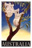 Australia Koala c.1956 Plakater af Eileen Mayo