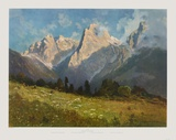 Summer in the Mountains Collectable Print by Hans Sterbik