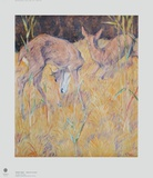 Deer in the Reed Collectable Print by Franz Marc