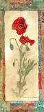 Poppy Montage Posters by Charlene Olson