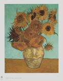 Girassol Impressões colecionáveis por Vincent van Gogh