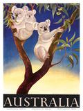 Australia Koala c.1956 Plakat autor Eileen Mayo