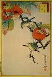 Japanese Eyeglass-Birds and Khaki Fruit Prints by  Sugakudo