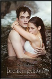 Breaking Dawn - Edward &amp; Bella Water Photo