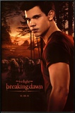 Twilight 4  Breaking Dawn  Jacob Posters