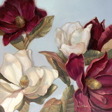 Magnolia Prints by Paul Mathenia